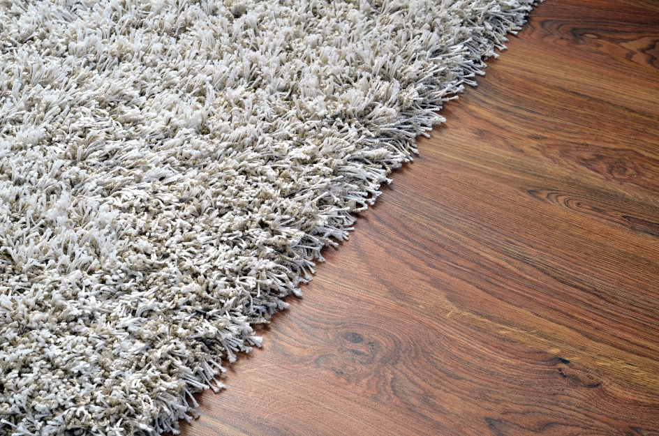 blog image of carpet and hardwood floors in an apartment